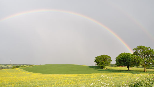 A rainbow over fields near Great Henny, Stour Valley
