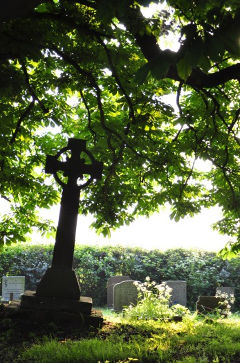 Sunlight in the evening at Great Henny churchyard