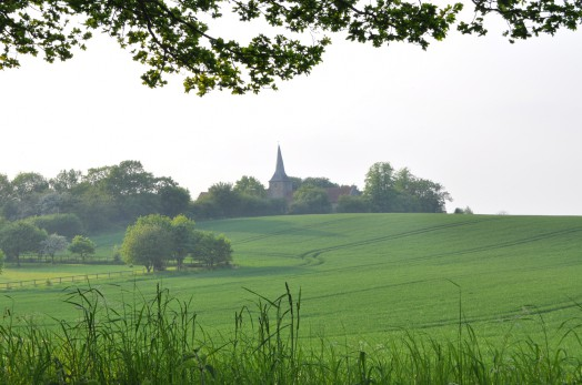 View of Great Henny Church Spire